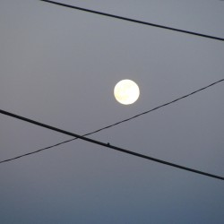 moon & power lines